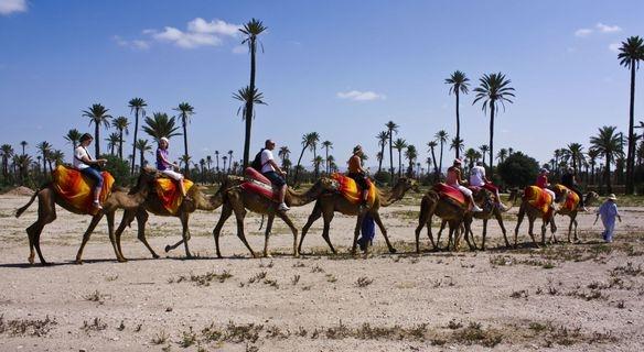 Activit s faire marrakech activit marrakech - Chambre chez l habitant marrakech ...